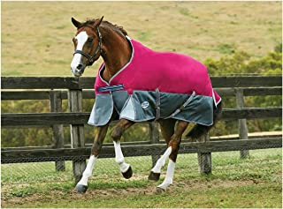 Best cheap horse blankets canada Reviews
