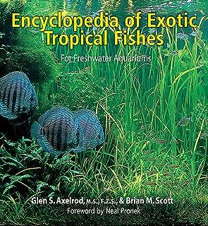 exotic fish pond