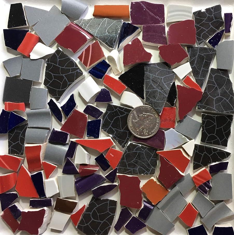 Mosaic Art & Craft Supply ~ Mixed Patern Red Gray & Black Tiles (B033)