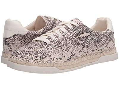 Dolce Vita Madox (Stone Snake Print Leather) Women