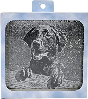 Hueter Toledo Pet Memory Stones, Memorial Headstone, Small with Customizable Photo Frame