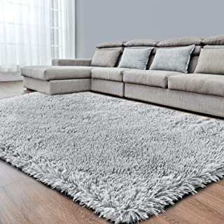 Light Grey Super Soft Area Rug for Bedroom,4x6,Fluffy...