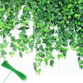 Best small leaf ivy Reviews