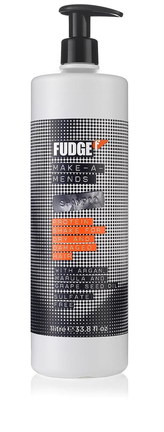 小売現れるぐったりMake-A-Mends Shampoo - Sulfate Free (For Dry and Damaged Hair)[並行輸入品]