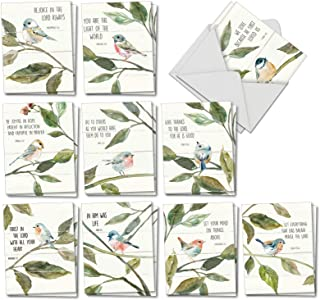 Scripture Birds - 20 Assorted Religious Blank Note Cards with Envelopes (4 x 5.12 Inch) - Watercolor Painted, Bible Verse Quotes - All Occasion Boxed Greetings (10 Designs, 2 Each) AM7108OCB-B2x10