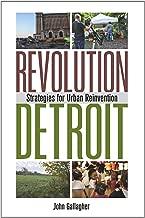 Revolution Detroit: Strategies for Urban Reinvention (Painted Turtle)