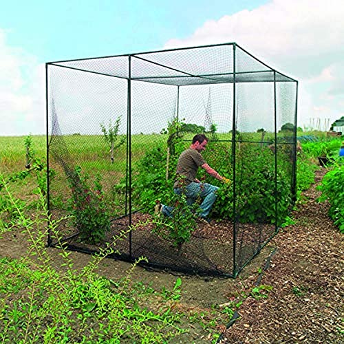 Garden Enclosure Amazon Com