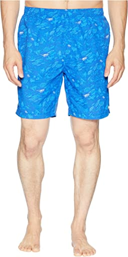 Big Dippers Water Shorts