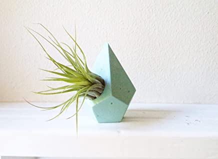 Geometric teardrop mini planter, air plant holder