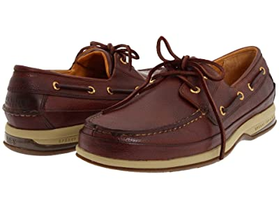 Sperry Gold Cup Boat w/ASV (Cognac) Men
