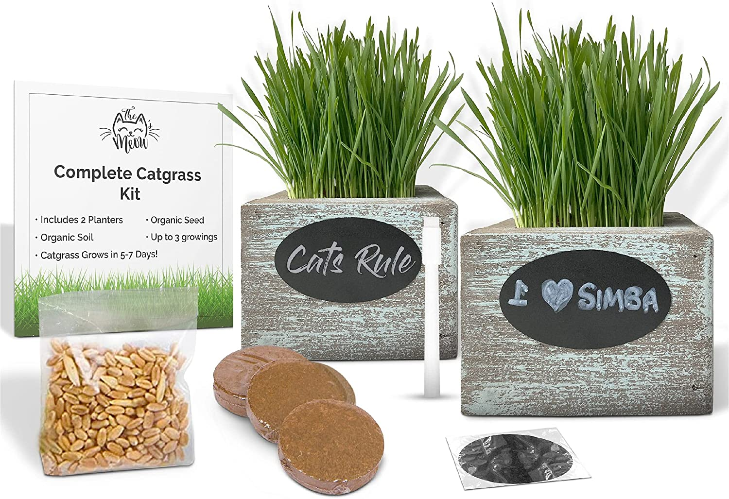 Some reservation Organic Cat Grass Seeds Complete Free Shipping Kit - 3 Growing' Soil Seed for
