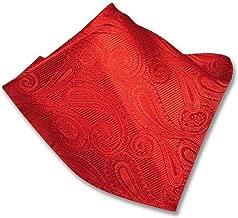 Vesuvio Napoli Paisley Design Men's Hankerchief Pocket Square Mens Hanky