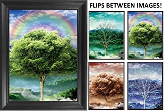 Four Seasons Tree 3D Poster Wall Art Decor Framed Print   14.5x18.5   Lenticular Posters & Pictures   Memorabilia Gifts for Guys & Girls Bedroom   Beautiful Nature Scene of Changing Spring Colors