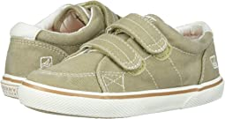 Sperry Kids Halyard H&L (Toddler/Little Kid)