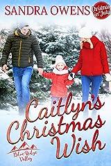Caitlyn's Christmas Wish (Blue Ridge Valley Book 4) Kindle Edition