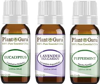 Best essential oils lavender and eucalyptus Reviews
