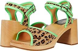 Steppe Sandal