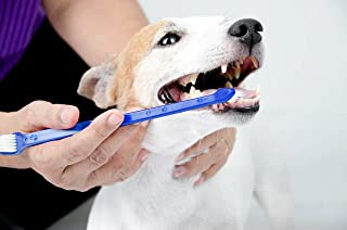 Duke's Pet Products Dog Toothbrush Set Double Sided Canine Dental Hygiene Brushes with Long 8 1/2 Inch Handles and Super Soft Bristles (Color Vary)