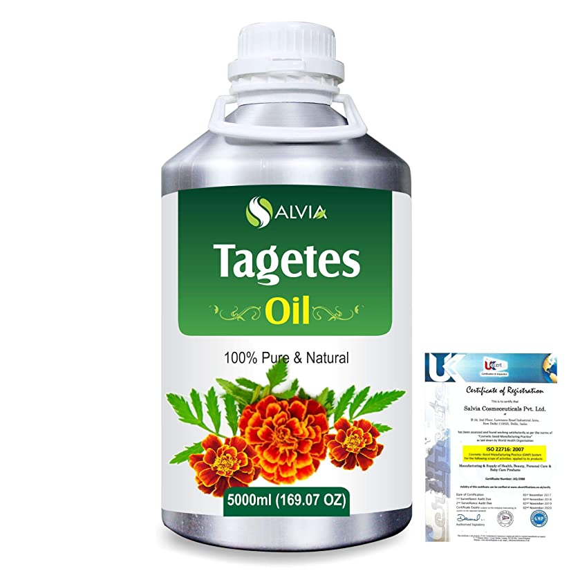 シンカン伝説扱うTagetes (Tagetes Minuta) 100% Pure Natural Essential Oil 5000ml/169 fl.oz.