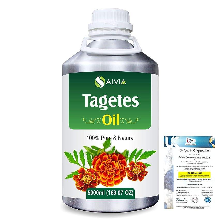 弁護句読点素敵なTagetes (Tagetes Minuta) 100% Pure Natural Essential Oil 5000ml/169 fl.oz.
