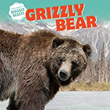 Grizzly Bear (North America's Biggest Beasts)