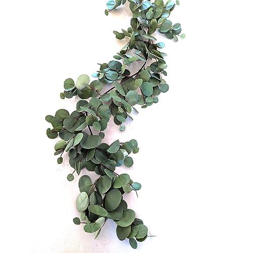 Eucalyptus Swag Amazon Com