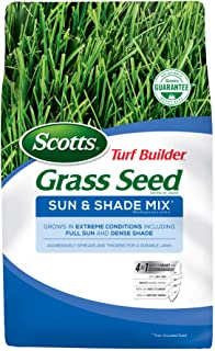 Time To Overseed Your Lawn