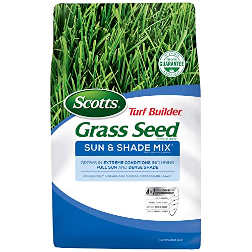 Liquid Grass Seed Amazon Com