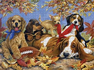 Jigsaw Puzzle 500 Piece Art for Teen Adult,Grown Up Puzzles for Beginner Large Toy Games Educational Gift Home Decor (Animals)