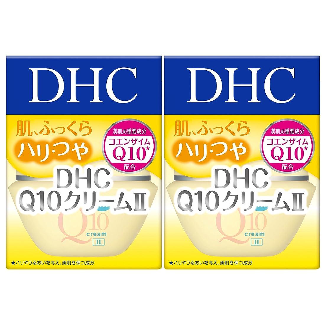 作家振動させる少年【セット品】DHC Q10クリームII (SS) 20g 2個セット