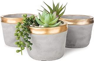 MyGift Cement Grey & Gold Textured Succulent Planter Pots, Set of 3