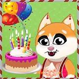 キティの誕生日パーティー - ペットの誕生日の驚き