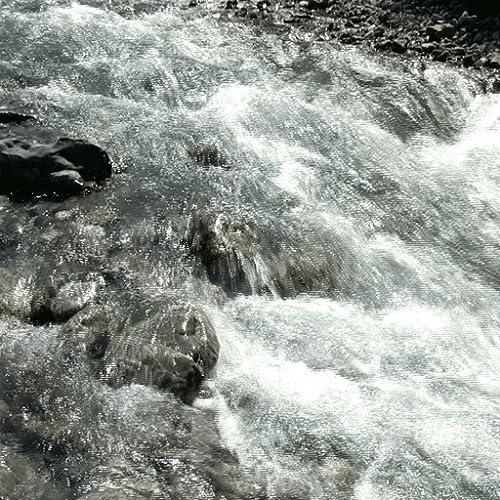 Clear Mountain Stream LWP
