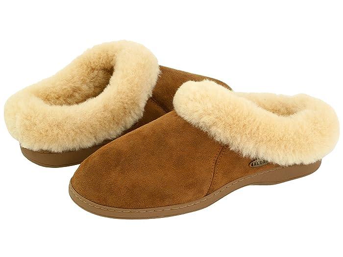 Acorn  Ewe Collar (Walnut Sheepskin) Womens Slippers