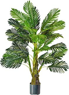 Best four palm trees Reviews