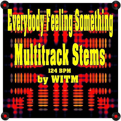 Everybody Feeling Something (Multitrack Stems) [124 BPM] by