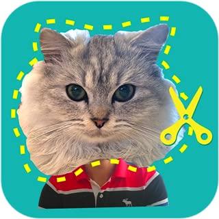 cut copy paste photo app