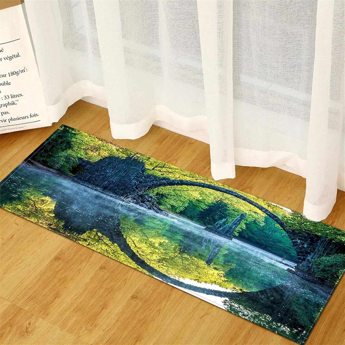 野生穴滴下スーパーソフトラグ滑り止め耐久性のあるカーペット キッチンカーペットホームベッドルームエントランス玄関廊下バルコニーフロアマット景観パターン浴室ノンスリップ吸水ラグ (Color : CFBI5, Size : 40cmx60cm)