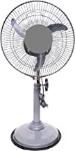 Starvin Laurels || Mini Pedestal Fan || ISI Approved Copper Motor || 1 Year Warranty || Sweep- 300 MM, 12 Inches,metal body Gray Cyclone G-85