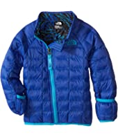 The North Face Kids - Thermoball Jacket (Infant)