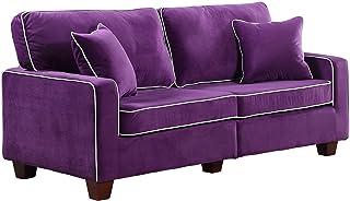 Divano Roma Furniture Collection - Modern Two Tone Velvet Fabric Living Room Love Seat Sofa (Purple)