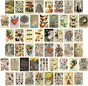 50PCS Vintage Botanical Illustration Tarot Aesthetic Pictures Wall Collage Kit, Vintage Posters for Room Aesthetic, Bedroom Decor for Teens Boys Girls, Cottagecore Decor, Collage Kit