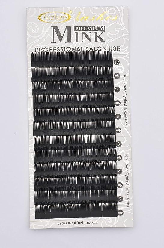 まぶしさ臭い調和のとれたまつげエクステ 太さ0.25mm(カール長さ指定) 高級ミンクまつげ 12列シートタイプ ケース入り (0.25 12mm C)