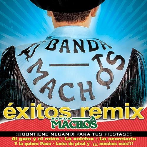 Al Gato Y Al Raton (Remix)