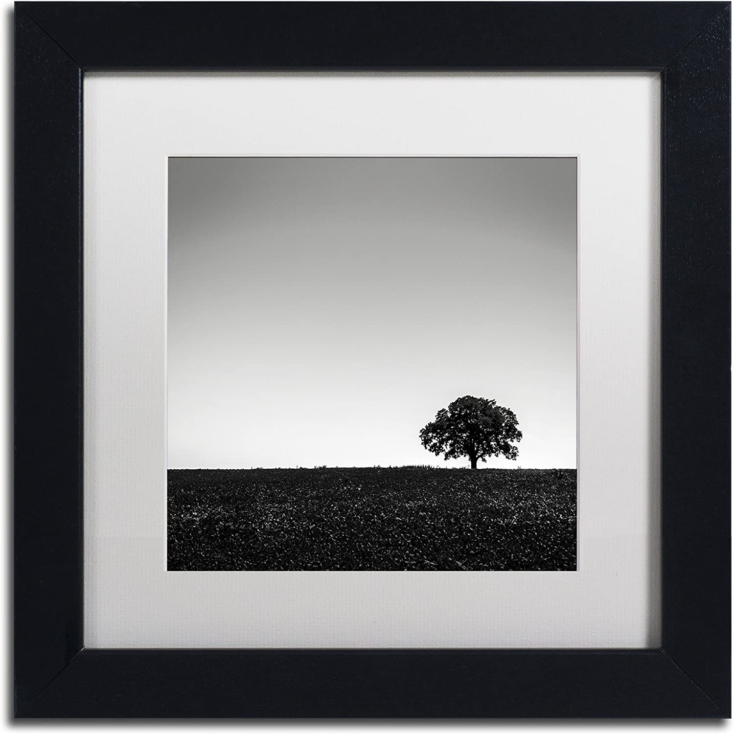 Trademark Fine Art One Tree Hill by Dave MacVicar Frame, 11 by 11Inch, White Matte