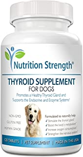 kelp for dogs with hypothyroidism