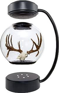 Hover Helmets Drop-Tine Replica Buck Skull & Antlers Hovering Drop-Tine Replica Buck Skull with Antlers