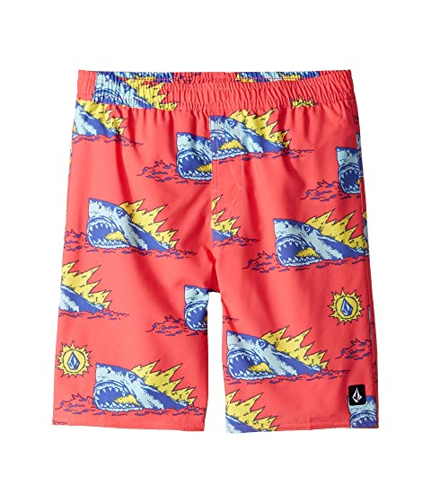 4312e753d7 Volcom Kids Duhh Dunt Trunks (Little Kids/Big Kids) at Zappos.com
