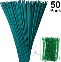 Green Wood Plant Stake Floral Plant Support Wooden Bamboo Stake Natural Craft Picks with 100 Pieces 15 cm Long Green Metallic Twist Ties (35 cm, 50 Pieces)