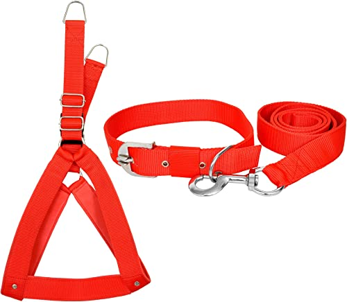 VIP COLLECTION Premium Strong Nylon Everyday Dog Collar Leash Buckle Dog Harness Set Combo Color-Red Medium